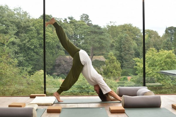 Avalon Wellbeing Centre The Nest Yoga