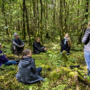 Our Forest Bathing Therapy is a practice that brings us into...